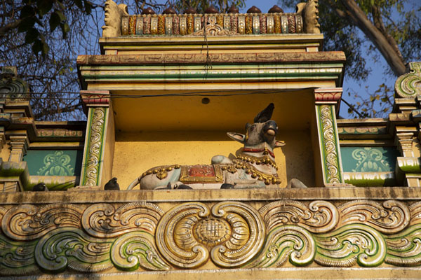Foto de Niche with a cow in a temple at the entrance to the Bull TempleBengaluru - India