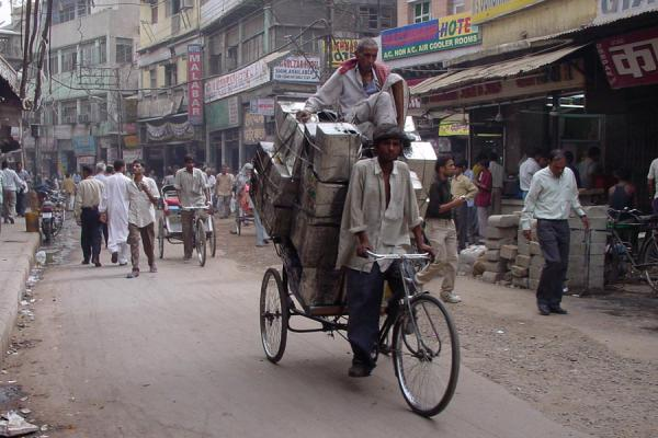 Picture of Chandni Chowk (India): Overloaded bicycle in Chandni Chowk, New Delhi