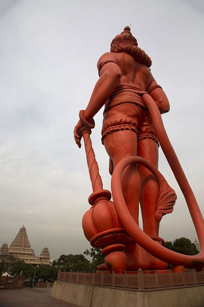 The Hanuman statue seen from behind | Chhatarpur Mandir | India