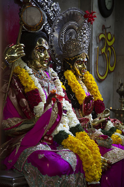 Statues of gods with flowers in the Shiva temple | Chhatarpur Mandir | 印度
