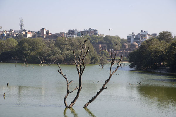 Picture of View towards Hauz Khas across the lake - India