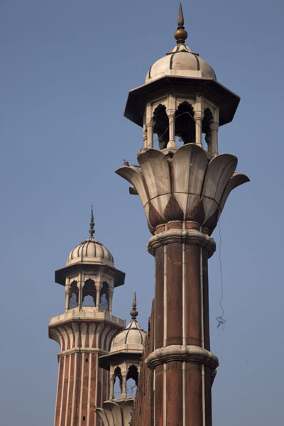 Picture of Minarets in a row at Jama Masjid