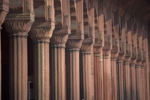 Row of red sandstone columns | Jama Masjid | India