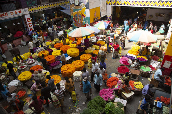Overview of the flower market of KR market | Marché Krishnarajendra | Inde