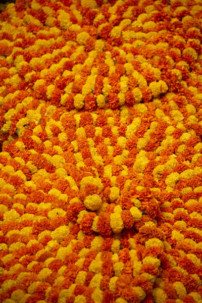Stacks of neatly stringed flowers at KR market | Mercato Krishnarajendra | India