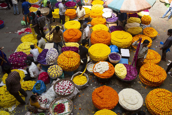 Stacks of flowers seen from above | Marché Krishnarajendra | Inde