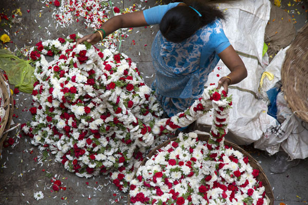 Woman stringing flowers together | Mercado Krisharajendra | India