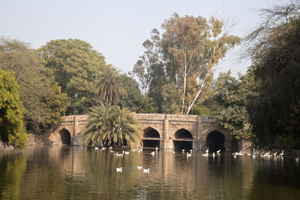 Picture of Looking across the lake towards Athpula, the eight-piered bridge - India - Asia