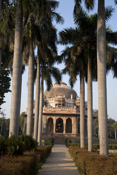 Picture of The tomb of Muhammad Shah appears at the end of a palm-tree lined lane