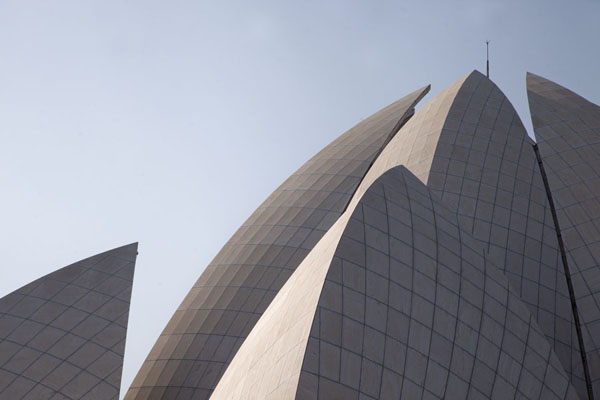 Looking up the white roof of the Lotus Temple | Lotus Temple | India