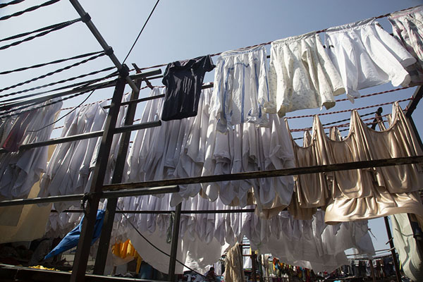 Looking up lines with laundry hanging to dry at Dhobi Ghat | Mahalaxmi Dhobi Ghat | 印度