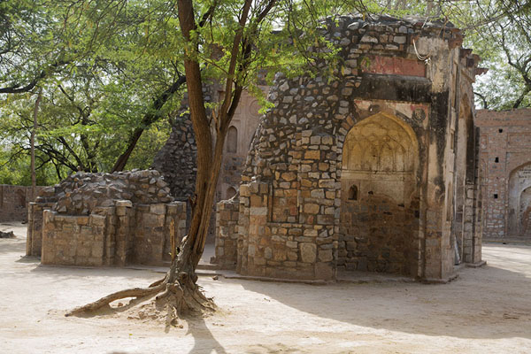 The ruined Sohailwali mosque | Mehrauli Archaeological Park | 印度