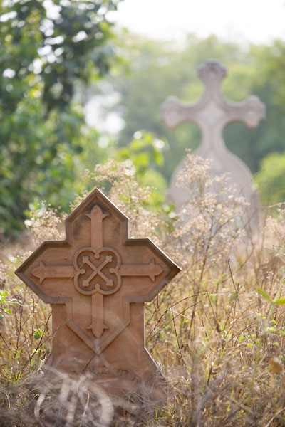 Foto di Tombstones sticking out of the shrubbery covering Nicholson CemeteryDelhi - India