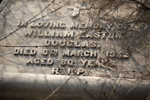 Close-up of a tombstone at the cemetery | Cementerio Nicholson | India