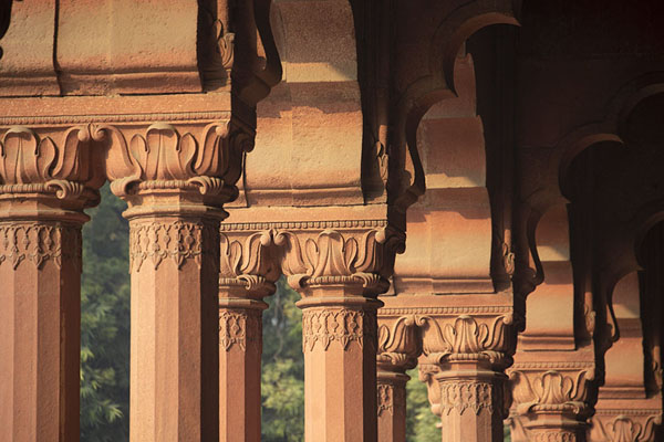 The columns of the Diwas-i-Khas building are decorated with precious stones depicting flowers | Red Fort | India