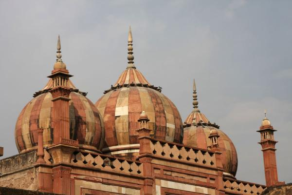 Typical Mughal domes at the entrance to Safdarjung Tomb | Safdarjung Tomb | India