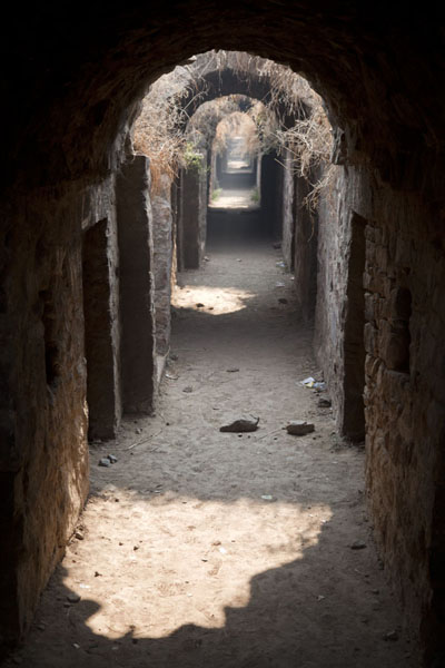 Foto van The secret passage under the ruins of Tughlaqabad FortDelhi - India