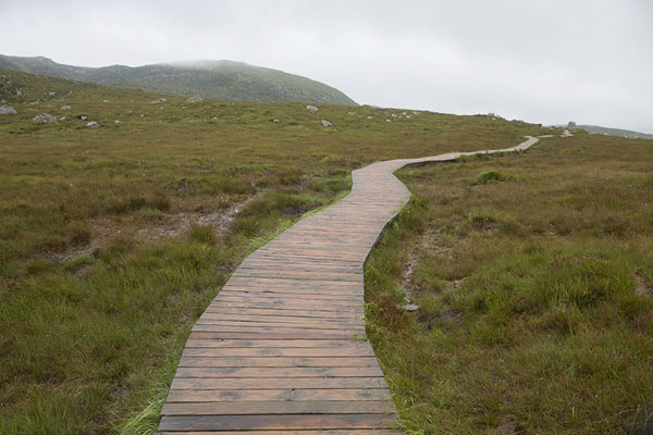 Foto van The boardwalk over the swampy terrain on the slopes of Diamond HillConnemara - Ierland