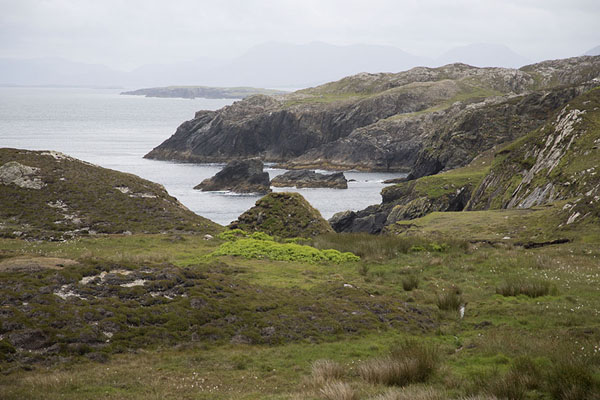 Picture of Coastline with rocks and sea stacks at the northeast side of Inishbofin - Ireland - Europe