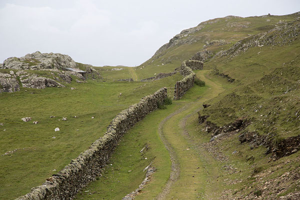 Foto van Track with stone wall at the west side of InishbofinInishbofin - Ierland