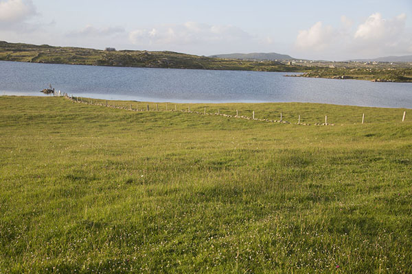 Foto de Fence in the green lands of Omey Island running to the sea - Irlanda - Europa