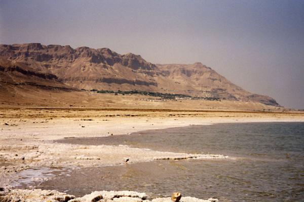 Picture of Israeli Dead Sea (Israel): Dead Sea coast