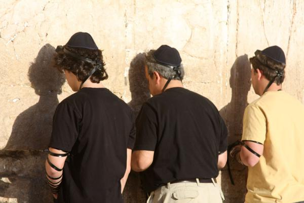 Jews in prayer at the Western Wall - 以色列
