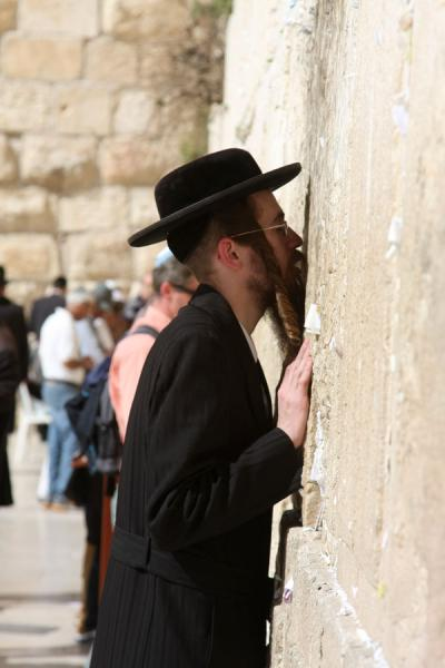 Foto di Kissing the WallMuro occidentale - Israele