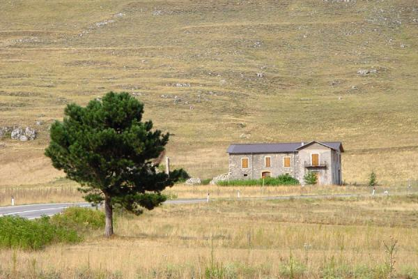 Picture of Abruzzo Landscape (Italy): House and tree in Abruzzo