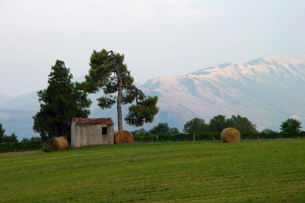 Picture of Abruzzo Landscape (Italy): Abruzzo landscape with mountains in background