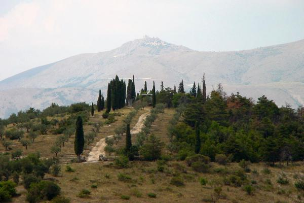 Picture of Abruzzo Landscape (Italy): Abruzzo hill with trees