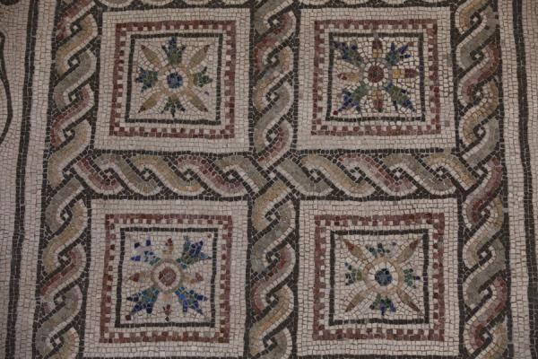 Picture of Mosaic displayed on a wall of the national museum in the Diocletian Baths