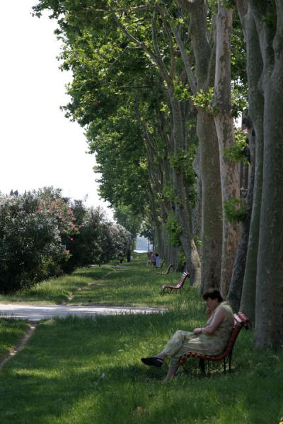 Taking a break on the Viale Piave at the east end of Castello | Castello | Italy