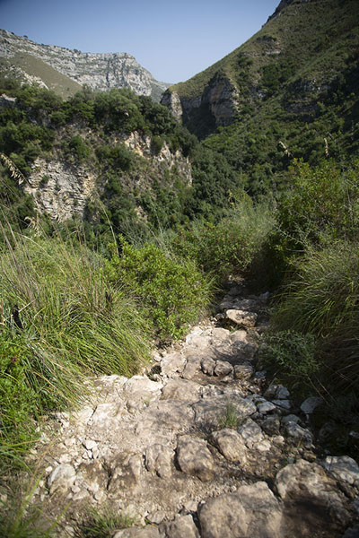 Stone trail leading down into the Cava Grande del Cassibile | Cava Grande del Cassibile | Italië