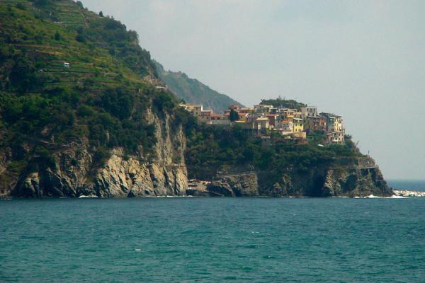 Picture of Cinque Terre (Italy): Manarolo on rock, Cinque Terre, Liguria