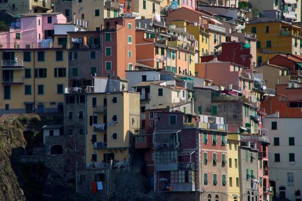 Part of the houses of Riomaggiore | Cinque Terre | Italy