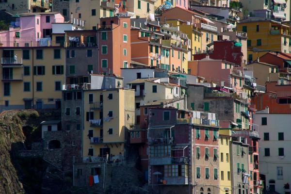 Picture of Riomaggiore: colourful houses, Cinque Terre