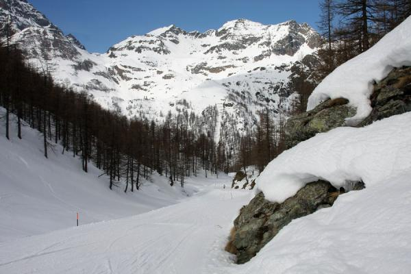 Picture of Monte Rosa skiing (Italy): Trail in the valley of Stafal-Tschaval