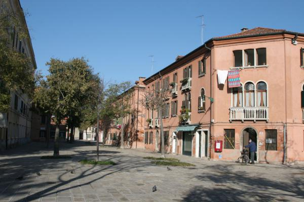 Picture of Murano (Italy): Quiet street with trees and man with bicycle in Murano