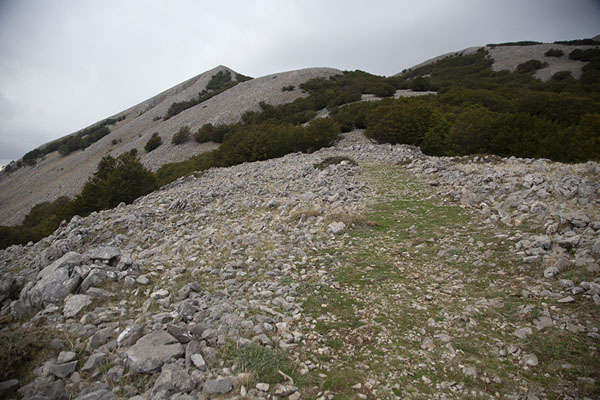 Trail on the slopes of Pizzo Carbonara - 意大利