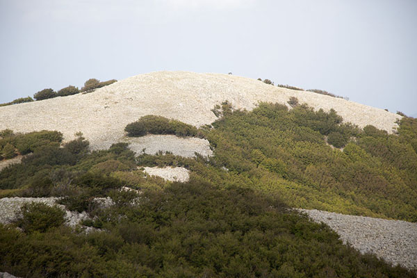 Bare summit of a mountain with vegetation on the slopes - 意大利