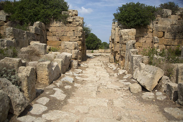One of the main streets of the acropolis of Selinunte - 意大利
