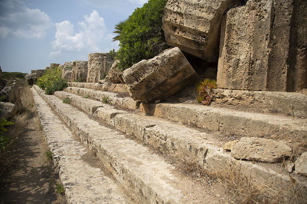 Photo de Fallen columns over the stairs of Temple CSelinunte - l'Italie