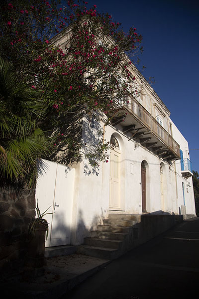 Flowers growing against one of the houses in Stromboli - 意大利