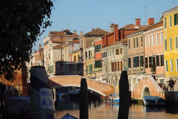 Picture of Typical Venice: houses and canals - Italy - Europe