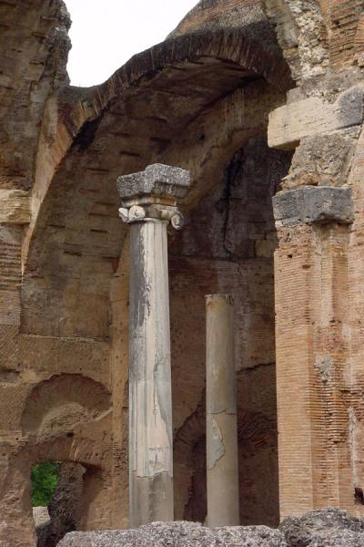 Column in the remains of the Temple of Serapis | Villa Adriana | Italy