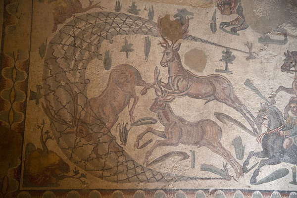 Detail of a hunting mosaic: using nets to catch prey | Villa Romana del Casale | Italië