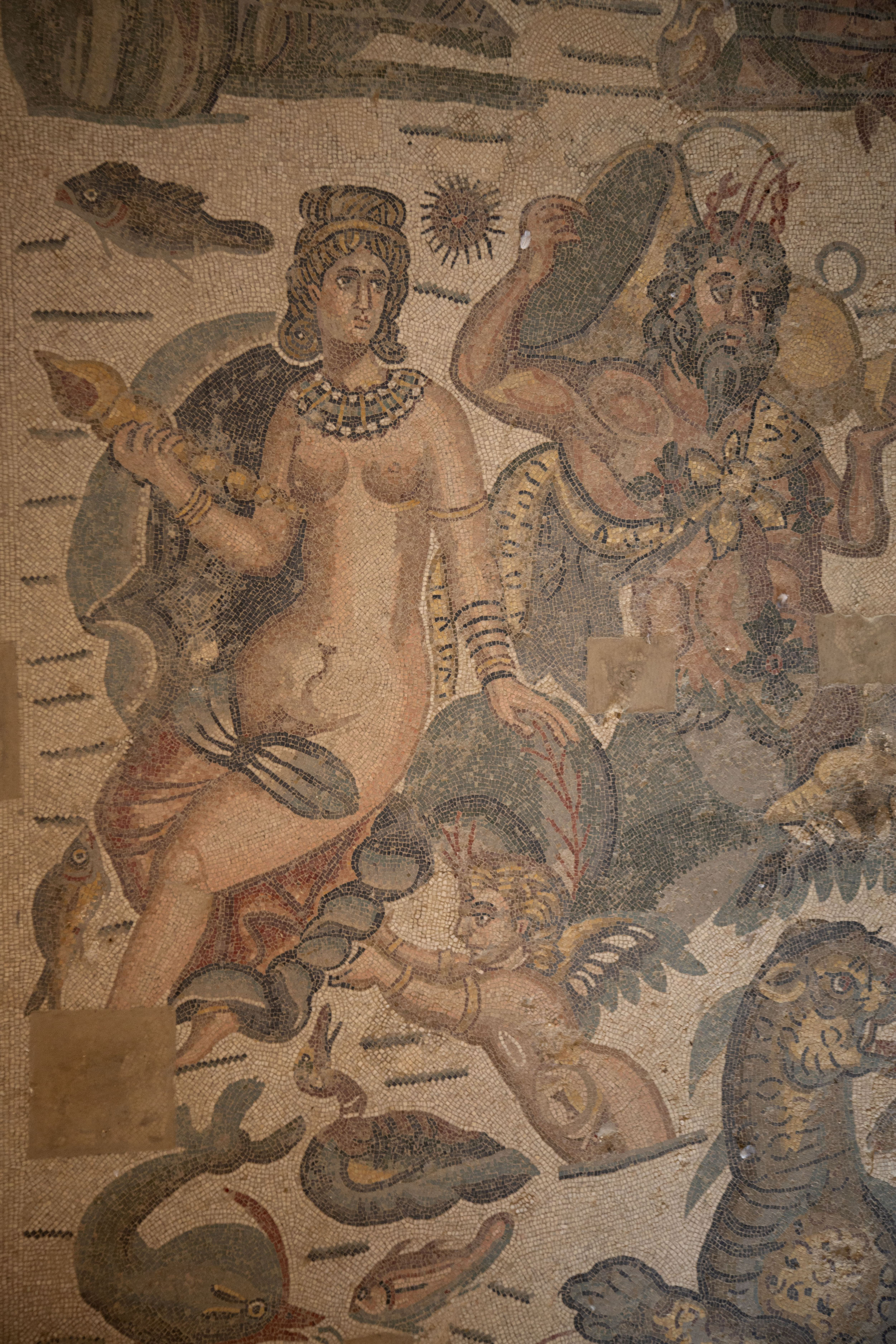Detail of a mosaic in the Diaeta of Arione - 意大利
