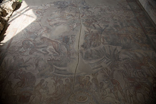 Overview of the mosaic depicting hunting scenes in the villa | Villa Romana del Tellaro | Italy