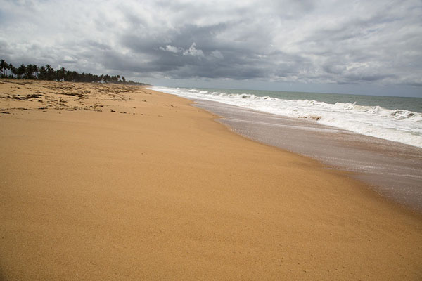 Photo de Atlantic waves crashing on the golden beach of Grand LahouParc national d'Azagny - Côte d'Ivoire